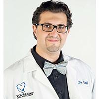 Dr.-Ali-Gorgi